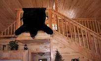 Looking up to loft, Heber Overgaard Real Estate Investment Cabin,