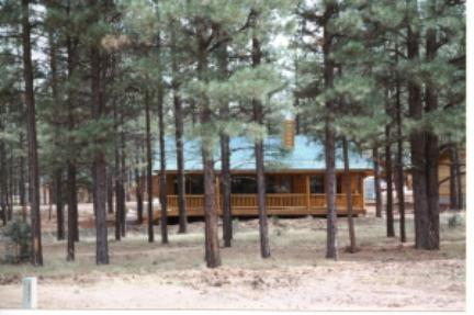Looking through the pines to the Bar S Cabin Rentals at Bison Ranch in Heber Overgaard, Arizona